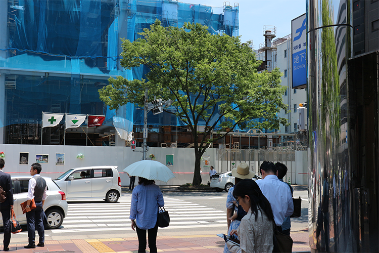 大通りの横断歩道を渡って右に曲がります。